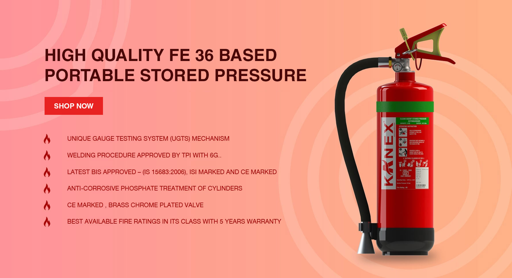 High Quality FE 36 Based Portable Stored Pressure Fire Extinguisher